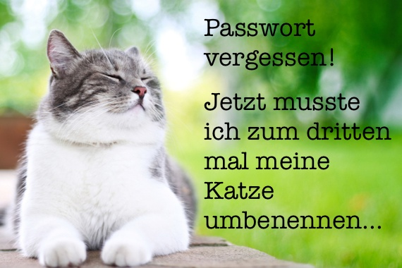 Testbericht Review 1Password mit Videp