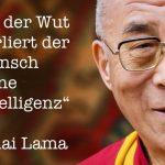 Dalai Lama zu Wut