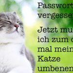 Mehr Sicherheit und Produktivität mit 1Password