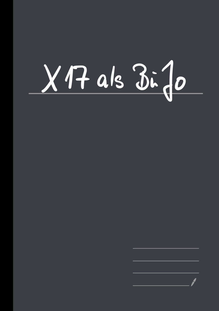 X17_als_BuJo 01